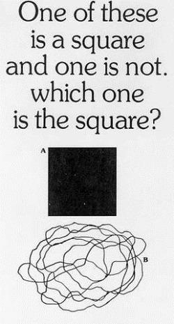 Какой из них квадрат?