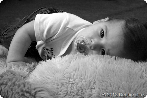 Nolan 9 month portraits