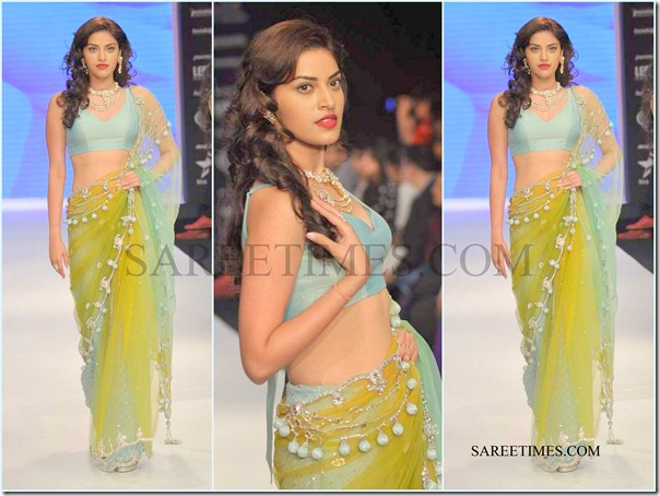 Jashn_IIJW_Saree (4)