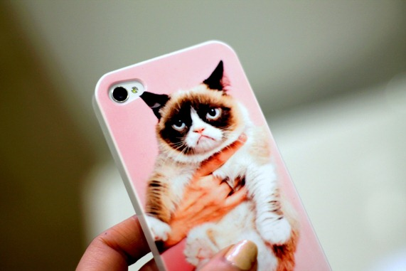 CASE APP CRUMPY CAT