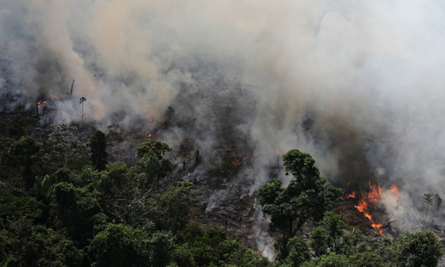 Smoke billows as an area of the Amazon rainforest is burned to clear land for agriculture near Novo Progresso, Para State. The Amazon rainforest has degraded to the point where it is losing its ability to benignly regulate weather systems, according to a stark new warning from Antonio Nobre, one of Brazil's leading scientists. Photo: Nacho Doce / Reuters