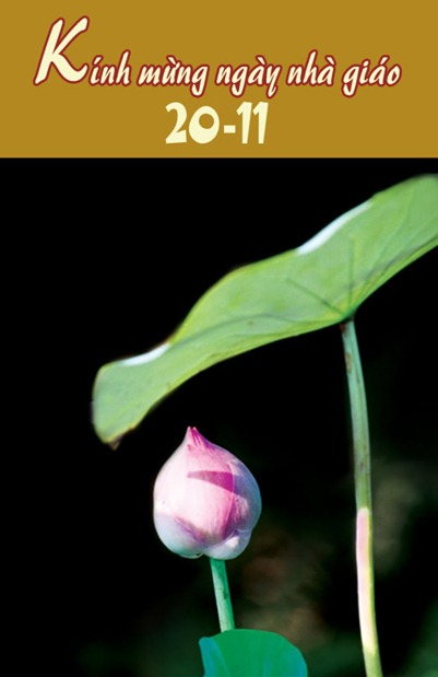 thiep-mung-ngay-giao-viet-nam-20-11 (14)