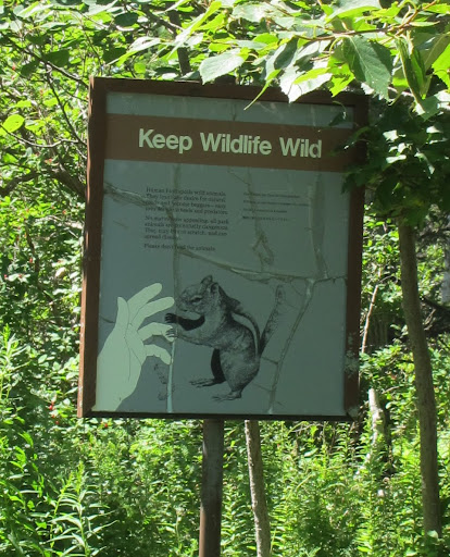 I guess this sign means that we shouldn't feed the wildlife - otherwise they will rely on humans and Frenchies to feed them and won't know how to fend for themselves.