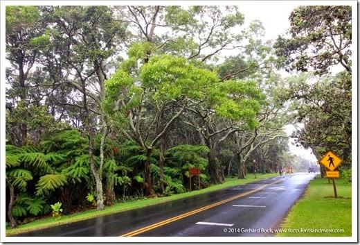 140724_HawaiiVolcanoesNP_0001