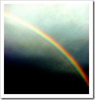 Rainbow_3831 (2_2)