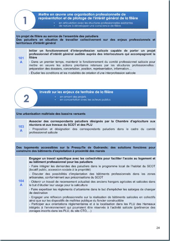 diagnostic_salicole_ca44_2011_page_025