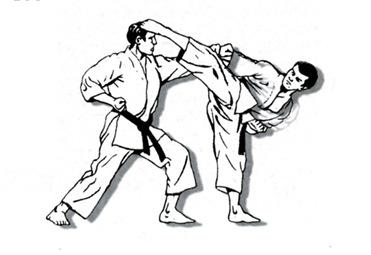 karate_blog