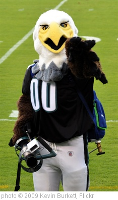 'Philadelphia Eagles Swoop' photo (c) 2009, Kevin Burkett - license: http://creativecommons.org/licenses/by-sa/2.0/