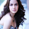 Shazahn Padamseee Latest Photo Shoot Stills 2012
