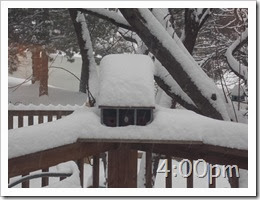 4oclock Snow Storm 02-04-2014 (4)