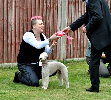 BEST PUUPY IN SHOW:  BURMINGTON SAY I DO AT MAEVANI
