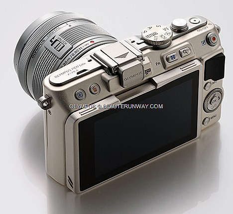 OLYMPUS PEN Lite E-PL5 Camera Body Silver, Black White M.ZUIKO DIGITAL Zoom Lens swiveling monitor and tilt angles enables easy self-portrait CS-38B Leather Body Jacket, MCG-3PR Premium Camera Grip,LC-37PR Premium Lens Cap, BCL-1580