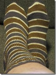 Big Kitty Sock