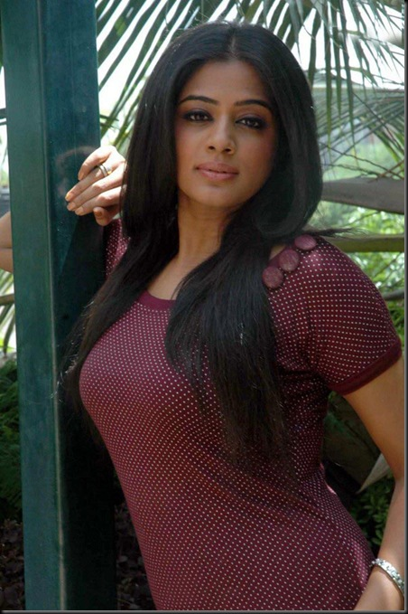 Priyamani Photo Shoot (15)