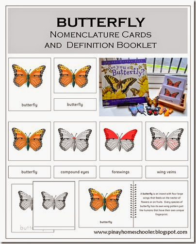 Butterfly Nomenclature Cards