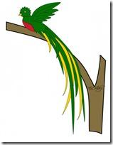 quetzal-color1