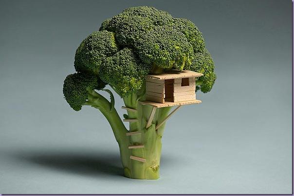 Miniatura-casa-árvore-Brócolis