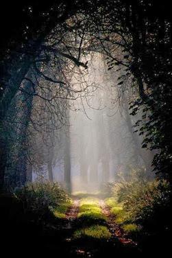 Los bosques de Henrietta ocultan secretos.