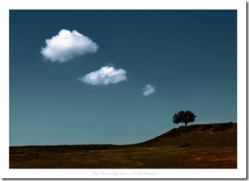 The_Thinking_Tree_by_gilad