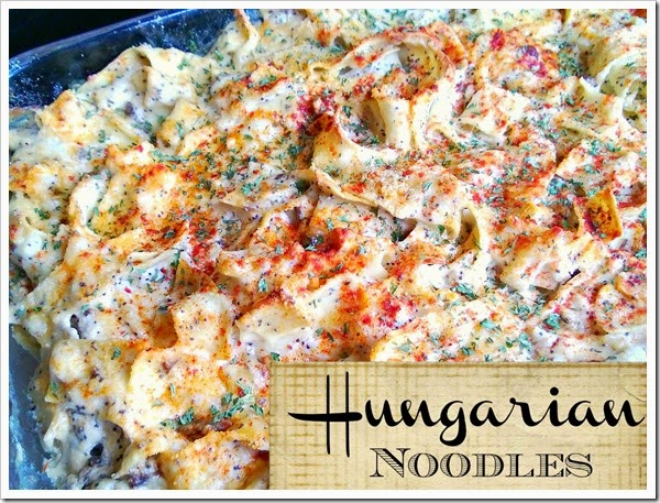 hungarian noodles