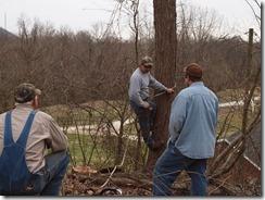 tree fun march 2013 003