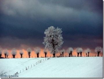 El Camino de los Canónigos en invierno
