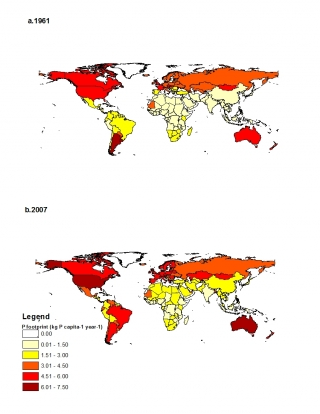 Global mined phosphorus use for food per capita, 1961 and 2007. Dietary changes since the early 1960s have fueled a sharp increase in the amount of mined phosphorus used to produce the food consumed by the average person over the course of a year. Metson, et al., 2013