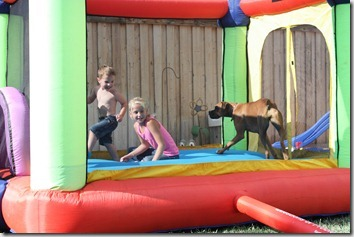 bouncy house 051