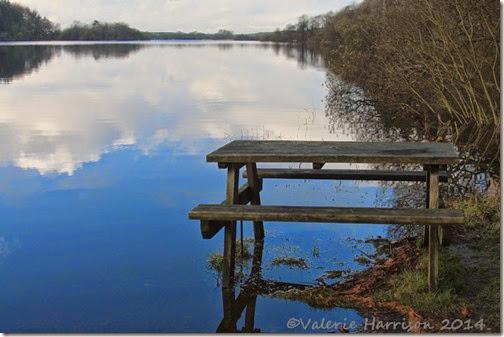 3-Whitefield-Loch