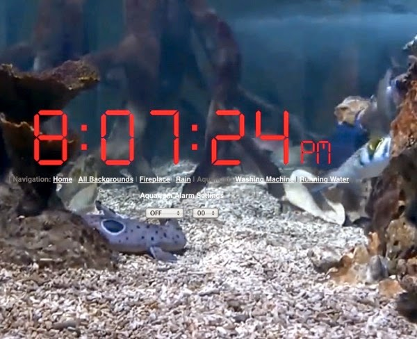 Clock over an aquarium video