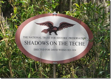 Shadows on the Teche (3)