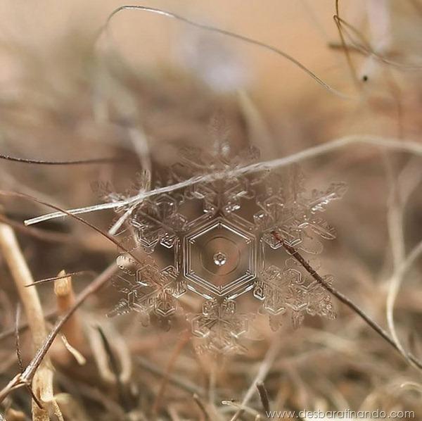 flocos-de-neve-macro-snowflakes-macro-photography-andrew-osokin-desbaratinando (1)
