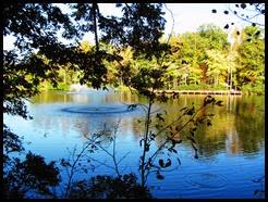 echo lake fall 2