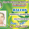 4 HAL.jpg