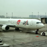 taking JAL Japanese AirLines from Seoul Gimpo to Tokyo Haneda airport in Roppongi, Tokyo, Japan