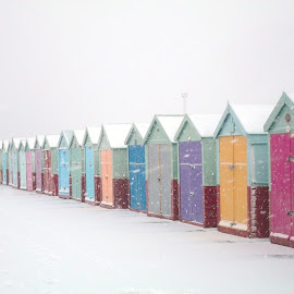 Brighton & Hove Beach Huts by Paul Nelson - Buildings & Architecture Other Exteriors ( brighton & hove, snow, beach huts, brighton and hove )