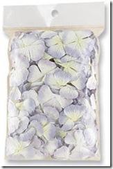 petalsprimapurple