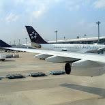 star alliance aircraft in Chiba, Tokyo, Japan