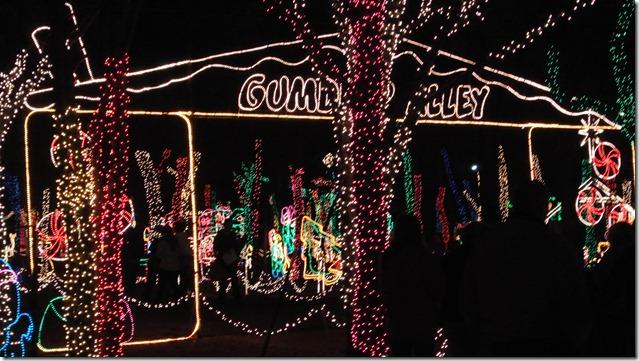 Prairie Lights 130