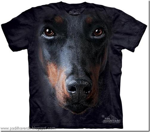 camisetas de Montain-6