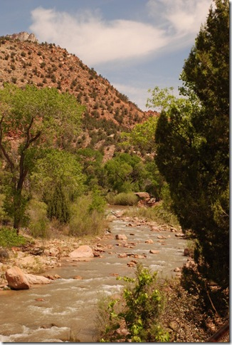 05-04-13 C Pa'Rus Trail Zion 011