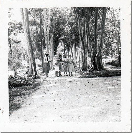 67 - Willis, Helenea, Elizabeth, Edwin and Sydney in Trinidad July 1952 - 1 Photoshopped