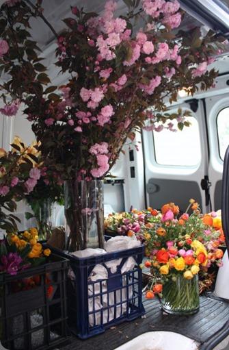 IMG_5957-460x690 cecilia fox flowers au