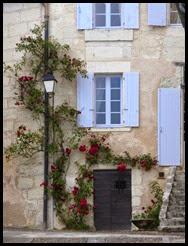 roses and door