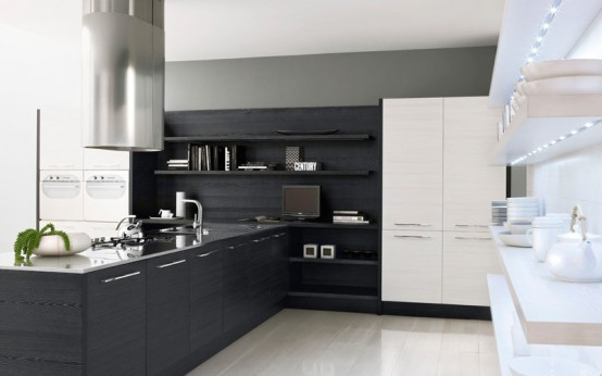 Modern Black and White Kitchen Design Ideas-New 2013