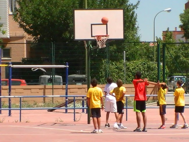 basket 1 campus.JPG