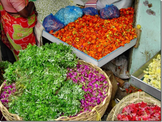 Índia e cores
