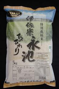 伊佐米永池 精米 白米5kg