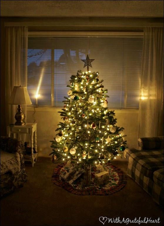 Christmas Tree 2014 - 2