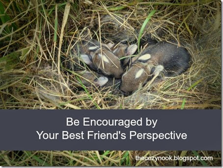 Be Encouraged by Your Best Friend's Perspective - The Cozy Nook